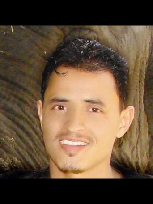 محمد العلائي