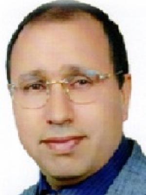 أ.د.محمد السعيدي