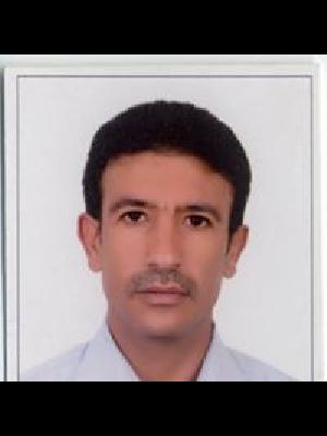 محمود الحرازي