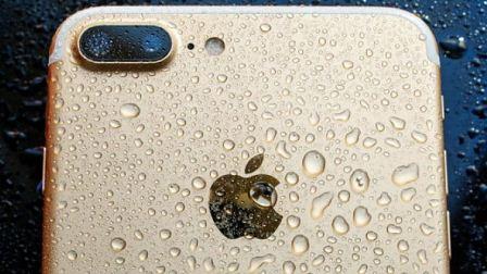 هاتف آيفون غرق في المحيط 48 ساعة، لكنّه عاد يعمل طبيعياً وبطاريته 80 %.. أما الأغرب من كل هذا، فهو كيف عثرت الغطاسة عليه!