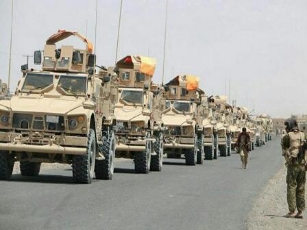 حصاد جديد لعناصر الانقلاب بـ«الحـديدة» والجيش يزف هذا الخبر السار