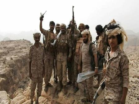 الجيش يعلن عن تقدم جديد بـ«تعز»