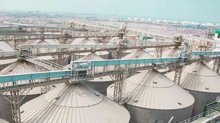 مخزون القمح في اليمن معرض للتلف