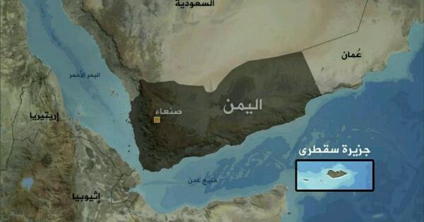 """""""قرقاش الإمارات"""" يكذب """"رويترز"""" ومسؤول يمني يكذب """"قرقاش"""" ويتهم بلاده بـ""""تدمير الشرعية"""""""