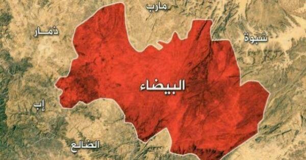"""الحوثيون يقعون في """"فخ محكم"""" لقوات """"الشرعية"""" في """"البيضاء"""""""