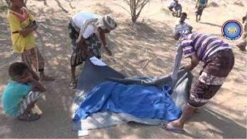 لغم حوثي يحصد أرواح«4» مدنيين بـ«الحديدة»
