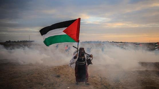 دول الخليج تنقسم حول فلسطين - قرار عماني وموقف سعودي ومقاطعة كويتية والبحرين تستضيف