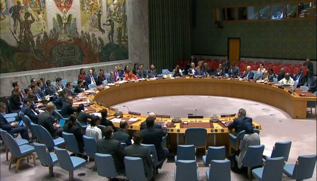 الحكومة ترد على دعوة مجلس الأمن الدولي لوقف التصعيد العسكري